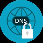 dns lock